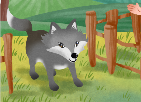 灰太狼寻食记